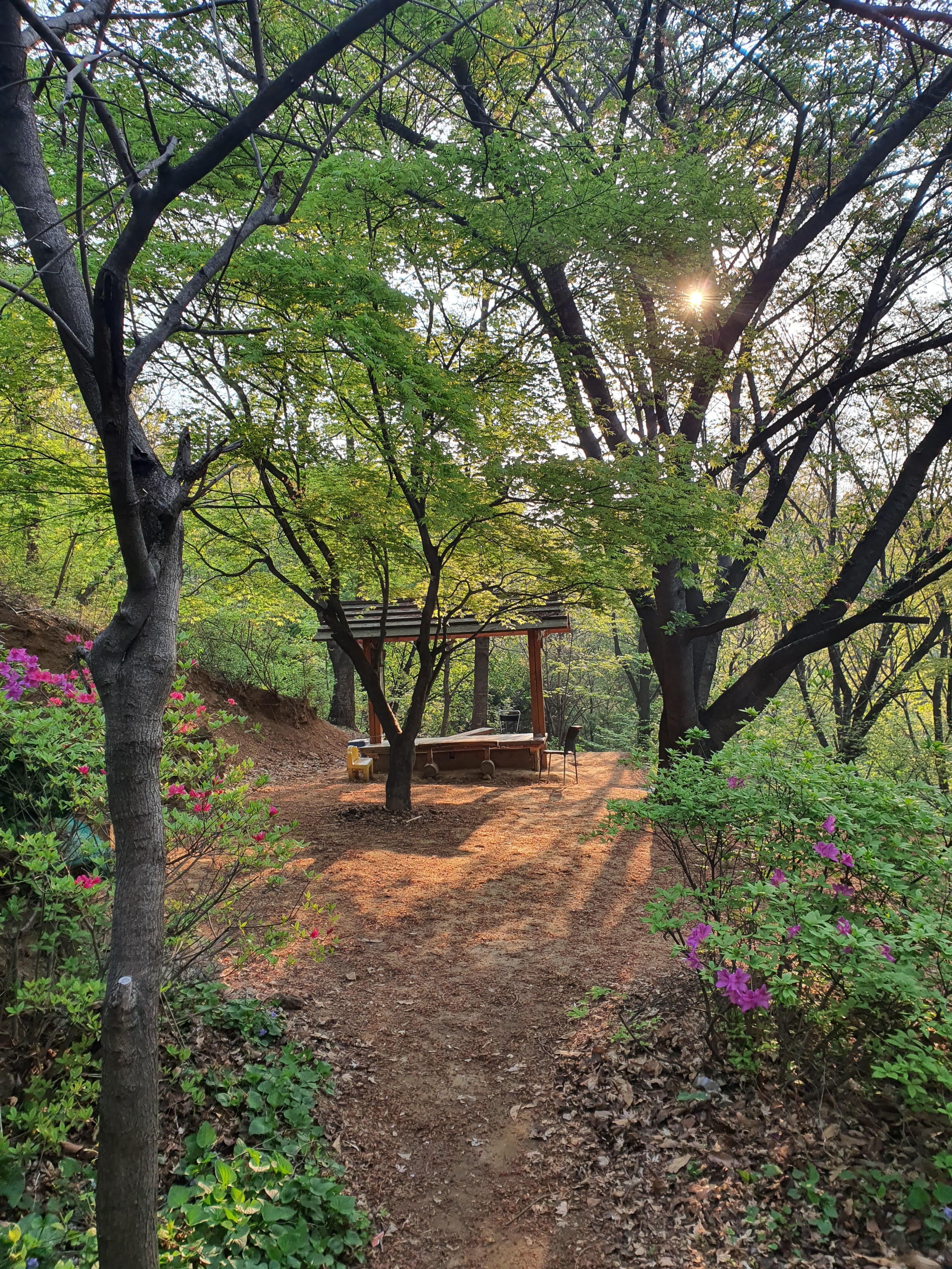 hidden picnic nook mountain